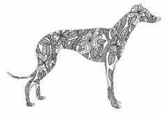 Greyhound doodle   by kellynowellies
