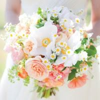 Feverfew, peonies, and roses Spring wedding bouquet