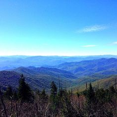 Dee and YUM Couple Travel Blog | Andrew's Bald Hike in the Great Smoky Mountains National Park