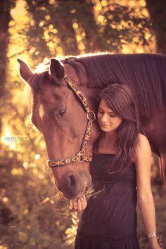 """Horse Sunset"""