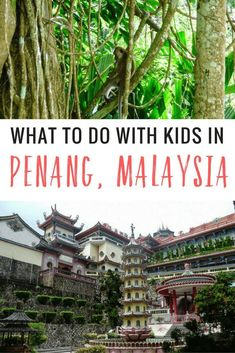 Malaysia is a great family travel destination. Here are some suggestions on what to do in Penang with kids. Malaysia is a great family travel destination. Here are some suggestions on what to do in Penang with kids. Travel The World Quotes, Travel Around The World, Travel Quotes, Asia Travel, Solo Travel, Travel Tips, Greece Travel, Travel With Kids, Family Travel