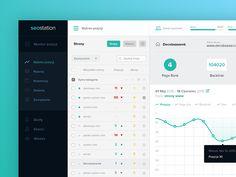Seostation Dashboard by Patryk Wąsik for Symu.co