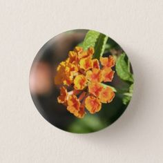 Little Orangina pin - flowers floral flower design unique style