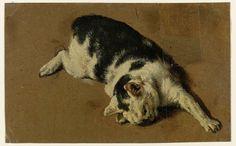 Kat liggend op de zij, de linkervoorpoot uitgestrekt, attributed to Adriaen van de Velde, 1646 - 1672