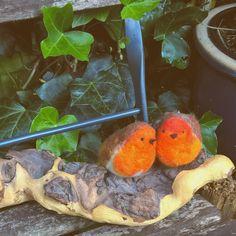 twee roodborstjes van vilt