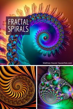 Fractal Spiral Collection - Fractals are the most fascinating math art and I just love the spirals! Get your favorite spiral in many colors and sizes, more than 100 spirals available as poster, framed fine art print, canvas, metal or acrylic print. Or buy a greeting card, phone cover or throw pillow: http://matthias-hauser.artistwebsites.com/art/all/fractal+spiral/all - or just click on the picture. (c) Matthias Hauser hauserfoto.com