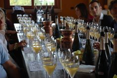 Càlinos, the vertical tasting