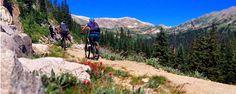 Home - Absolute Bikes Adventures - Guided Mountain Bike Rides in Salida, Colorado Mountain Bike Frames, Best Mountain Bikes, Mountain Biking, Road Bike, Colorado, Adventure, Mountains, American, Travel