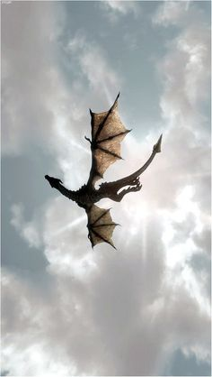 Avani, the Earth Dragon Matriarch. (Dragon in The Elder Scrolls V: Skyrim) Fantasy Animal, 3d Fantasy, Fantasy World, Narnia, Breathing Fire, The Ancient Magus Bride, Leo Valdez, My Sun And Stars, Throne Of Glass
