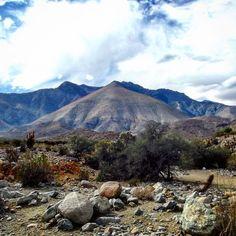 Ruta antakari- camino a Rio Hurtado y Pichasca IV región #landscape #ruta #antakari #nature #chilecaptures #nuestro_chilegram #IVregion #coquimbo #chile #enfocando_chile #registrandochile #cloudy #sky by temoncap