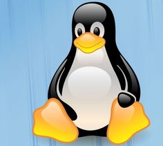 Currently, most developers use the Linux operating system Extended File System 4 as the default disk partition from linux distribution that they develop. Meanwhile, for those who use earlier versions of linux, maybe you use the format of the previous partition and Ext3 Ext2.