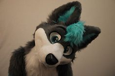 cosmic wuffy | Fursuit Studio Shoot (ATM Photo) Tags: cute studio wolf cosmic fursuit ...