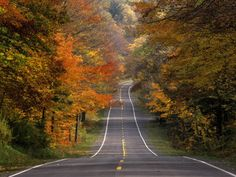 Route 15, Scenic Highway, Potomac Highland, WV
