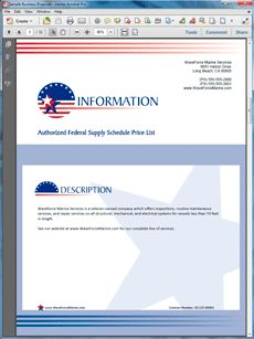 View Government Contract Service Sales Sample Proposal Business