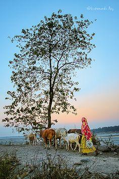 Returning home , India