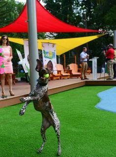 Dog,dog breeds,a dog's way home,dog park,dog the bounty hunter,dog breeds,dog whistle,dog grooming,dog beds