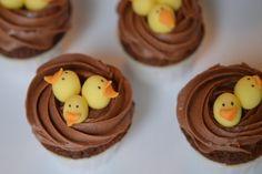 cupcakes-chocolat-sans-gluten