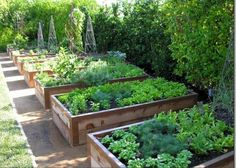 Beautiful diy raised garden beds ideas 06