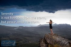 Serenity is not freedom from the storm, but peace amid the storm