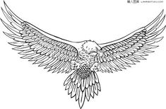 Vector sketch eagle, Sketch, Eagle, Hand Painted PNG and Vector Tattoos Torso, Stomach Tattoos, Tattoos Skull, Forearm Tattoos, Tribal Tattoos, Wolf Tattoos, Sleeve Tattoos, Celtic Tattoos, Kritzelei Tattoo