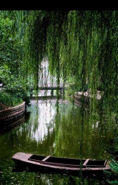 As Time Goes By, Layout, Willow Tree, Gardening, Planer, Outdoor Spaces, Over The Years, Minimalism, Garden Design