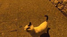 """Cat Standing Up"""