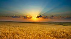 O Sol....