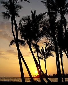 Hawaii, Kona Sunset