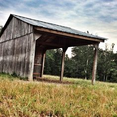 Photo by drkallison • Instagram  7 AM at the barn.  Run in shed.