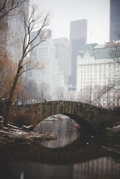 """Snowy, Peaceful Day in Central Park"" by  Justin Amoafo (2013)"