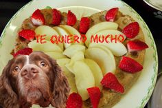 Mejores amigos: como hice torta | tarta | pastel a mis perros, forma de ...