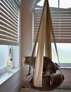 Kitty Cloud Hanging Cat Bed  Have to make this!