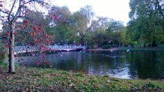 St James's Park London View, St James' Park, Saint James, River, Outdoor, Outdoors, Santiago, Outdoor Games, The Great Outdoors