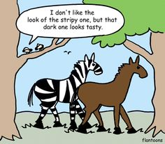 HOW THE ZEBRA GOT ITS STRIPES by jeb.biologists.org. Also - http://www.nature.com/ncomms/2014/140401/ncomms4535/full/ncomms4535.html #Zebras #Stripes #Horseflies