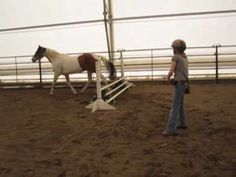 How to Teach Your Horse to Free-Jump - Liberty, Free-Longeing