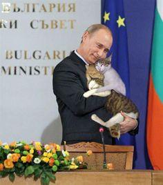 イメージ0 - 猫が好きなプーチン大統領の画像 - 日米韓 国際関係 - Yahoo!ブログ