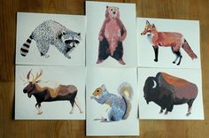 North American Animal Cards by Small Adventure