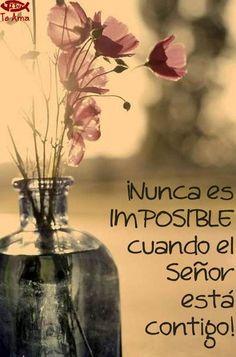 Nada es imposible para #Dios facebook.com/jesusteamamgaministries