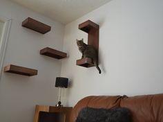 Phat Ghetto mačička