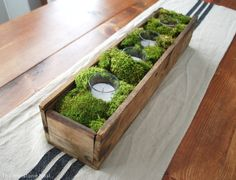 Add a few candles to a wooden box and surrounded them with mood moss