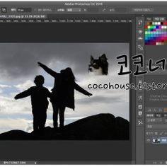 [포토샵] 사진에서 배경 없애는 방법 (알파 채널 사용) Photo Tips, Desktop Screenshot, Photoshop, Photography Tips