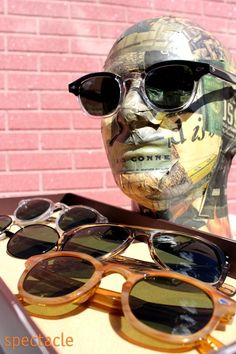 Image result for moscot