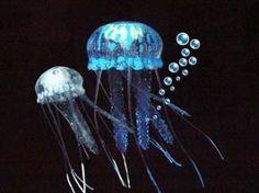 Eshopps Floating Jellyfish 2 Pk. - Blue/Clear