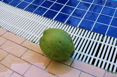 green coconut on floor swimming pool background