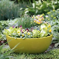edibles in a container, chives surrounded by pansies and lettuces