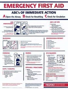 8 Best Images of Red Cross First Aid Guide Printable - Printable Emergency First Aid Guide, Printable First Aid Information and Printable Basic First Aid First Aid Kit Checklist, Diy First Aid Kit, First Aid Cpr, Basic First Aid, Survival Prepping, Emergency Preparedness, Survival Skills, Emergency Kits, Survival Food