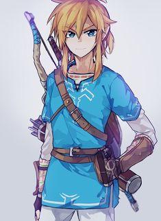 Link | Legend of Zelda Breath of the Wild