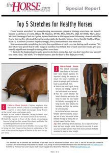 Download: Top 5 Stretches for Healthy Horses