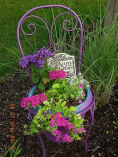 Container gardening, check this gardening post guide reference 9565027103 to grow flowers in a container. Container Flowers, Flower Planters, Container Plants, Container Gardening, Flower Pots, Plant Containers, Garden Chairs, Garden Pots, Bloom