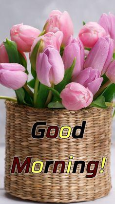 Good Morning Images Flowers, Good Morning Beautiful Images, Photos Of Good Night, Good Morning Sunshine, Morning Wish, Hello Sunshine